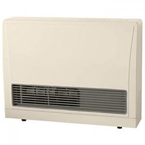 Rinnai 16700 BTU Direct Vent Wall Heater