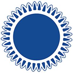 Blossman Gas Icon Logo Propane Flame
