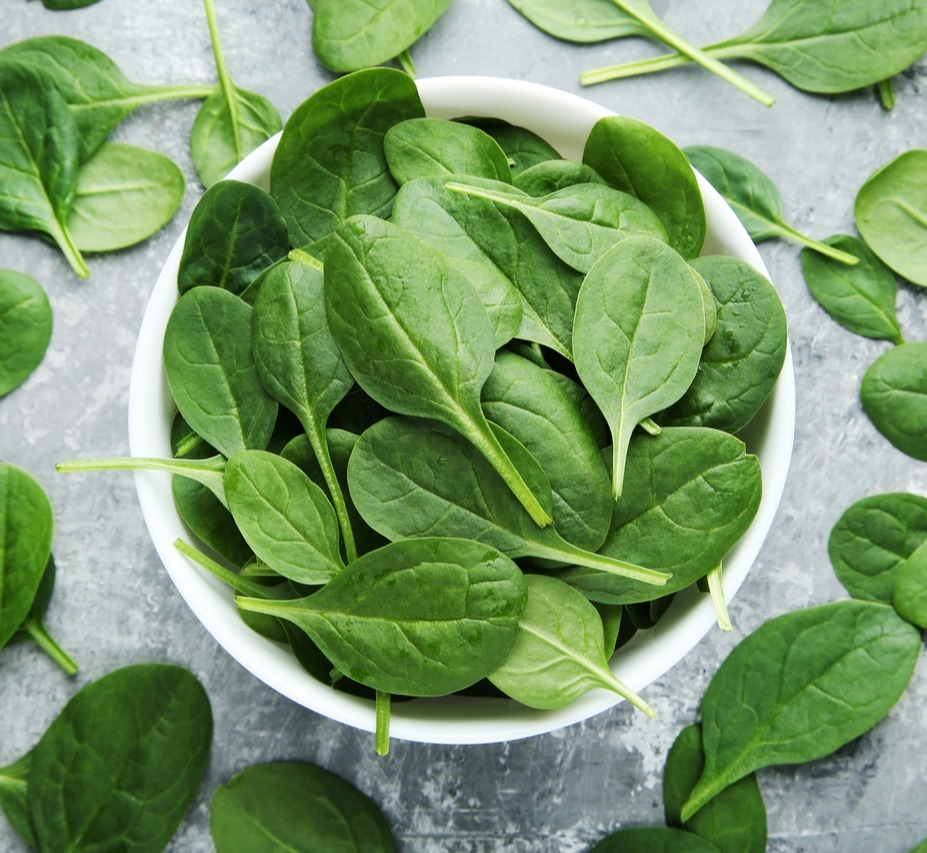 Fresh Green Spinach Leaves in Bowl and On Gray Table