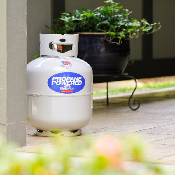 Propane Grill Cylinder picture on brick patio around summer plants