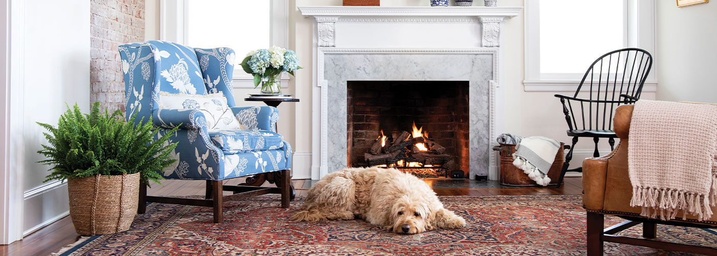 Home Page Header Gas Logs with Dog
