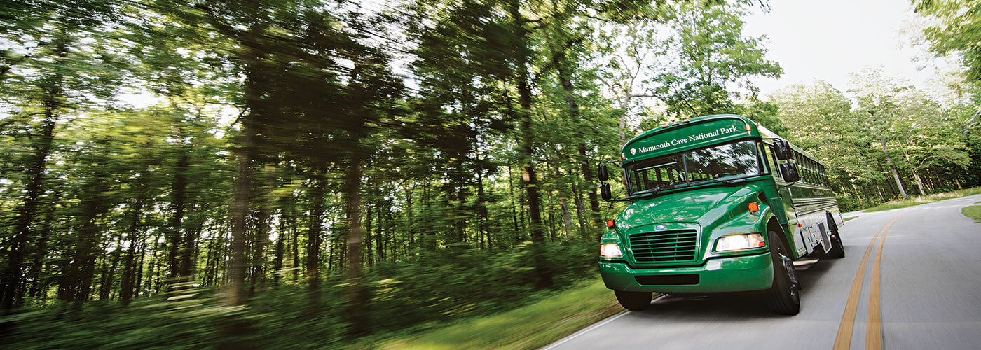 Home Page - Green Section - Green National Park Bus Driving on Scenic Road